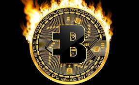 BCN Coin là gì